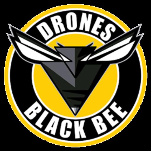 https://blackbeedrones.com/wp-content/uploads/2021/04/cropped-cropped-Logo_BlackBee.png